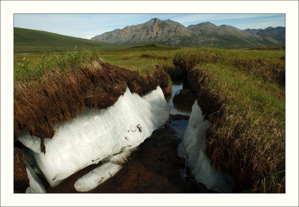 Corte en Permafrost en tundra