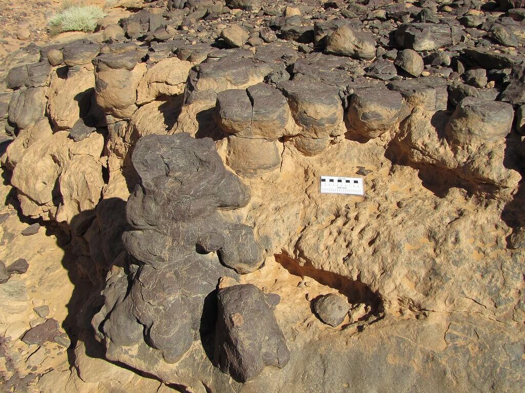 estromatolitos fosilizados
